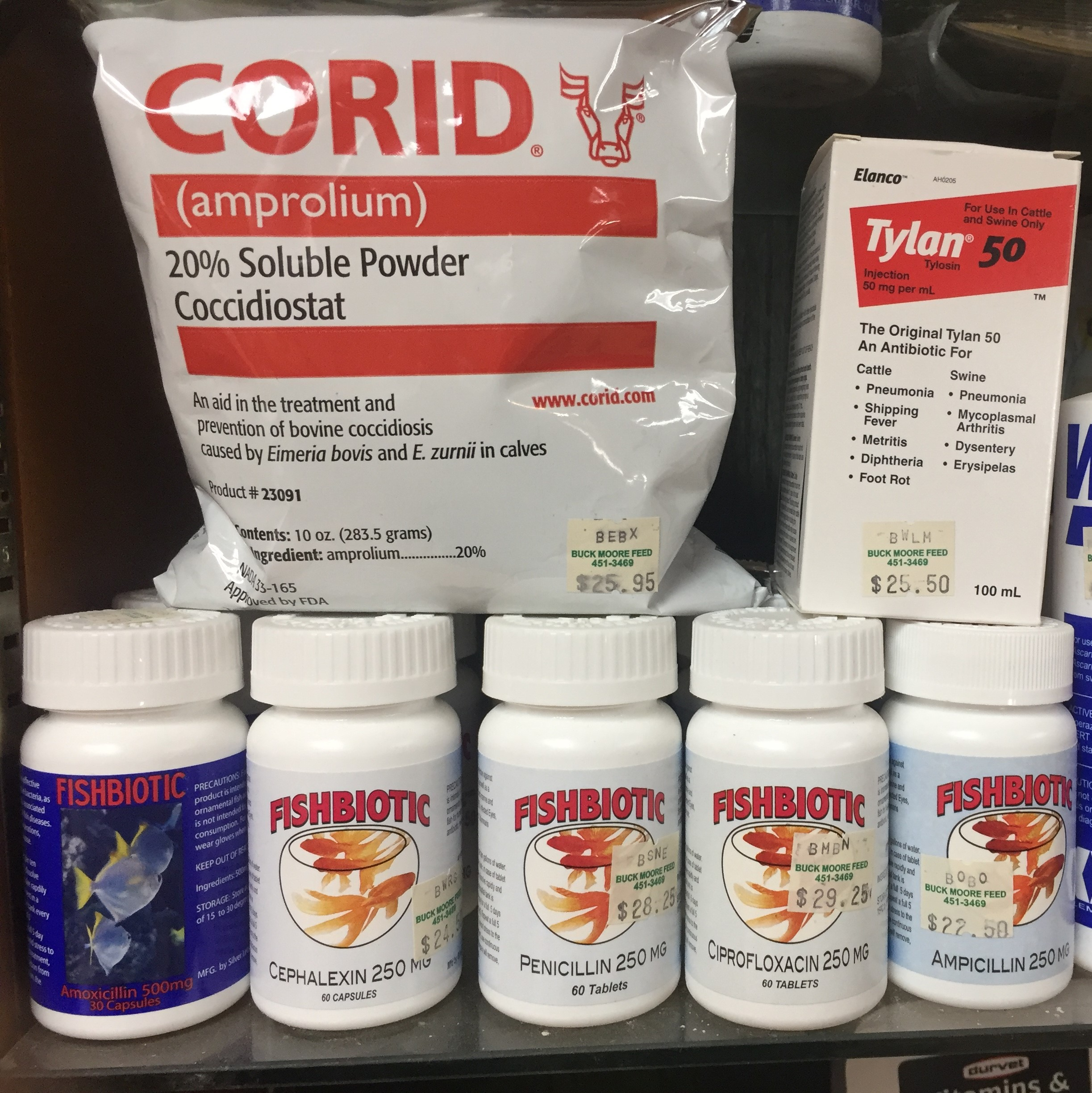 We also carry antibiotics and medications for animals other than chickens, which are not affected by the Veterinary Feed Directive, however, we can't suggest you use any product other than as labeled and intended..